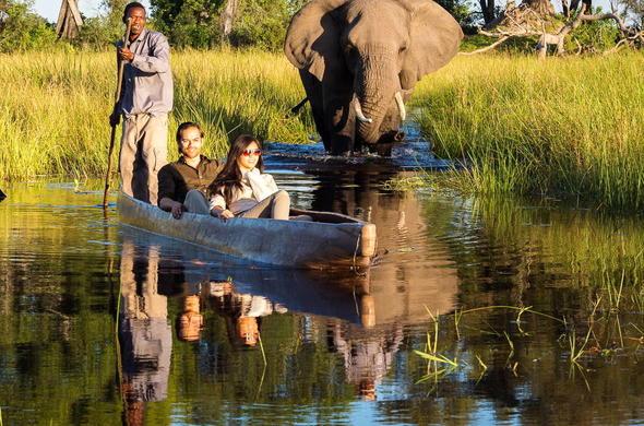 Botswana Elephant Safari Tour
