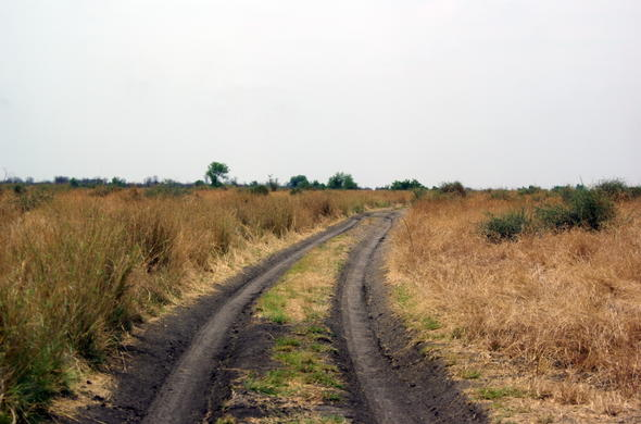 Dirt road from Moremi Game Reserve to Savute in Chobe National Park.