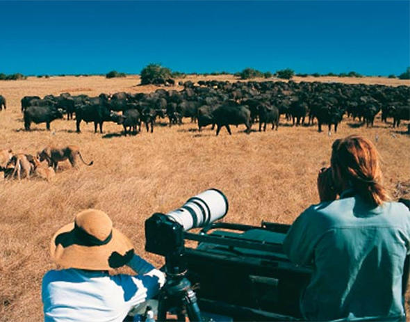 Filming and photographing is an ongoing project in Botswana. Ian Michler