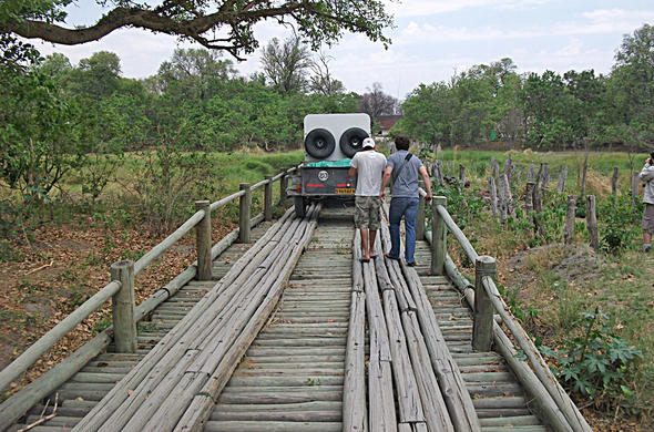 Bridge at Moremi Crossing. Franco