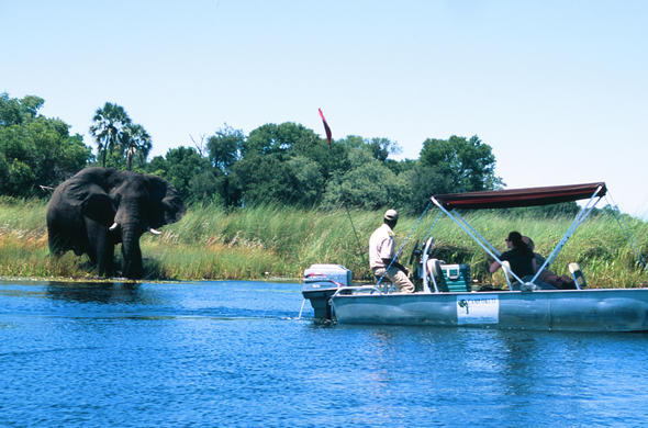 River safari near Camp Okuti