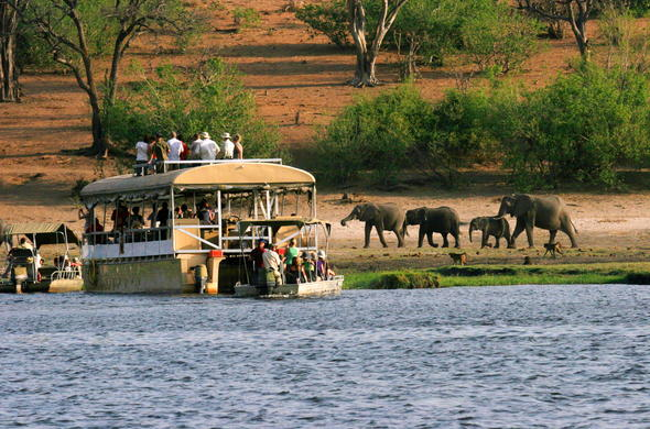 Sunset boast cruise on Chobe River.
