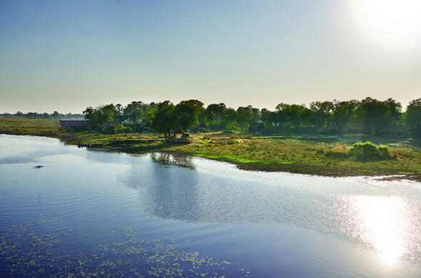 Scenic Okavango Delta waterways.