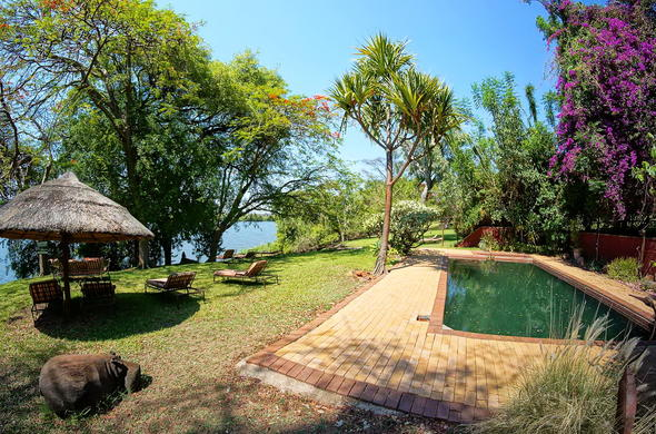 Kubu Lodge - pool