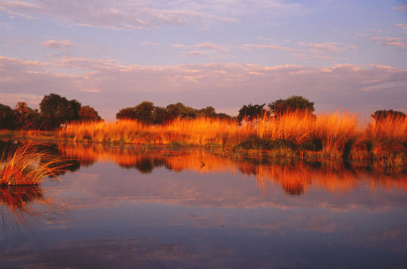 North Okavango