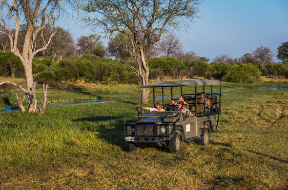Thrilling off-road game drives in the untambed Botswana bush.