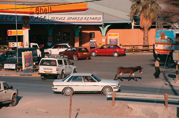 Donkey in the Traffic. Maun. Ian Michler