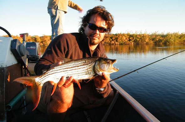 Tiger Fishing Okavango. Nxasameri Island
