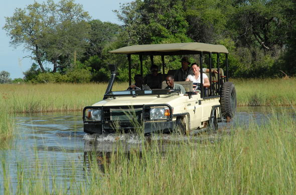 Off-road game drives in the Okavango Delta.