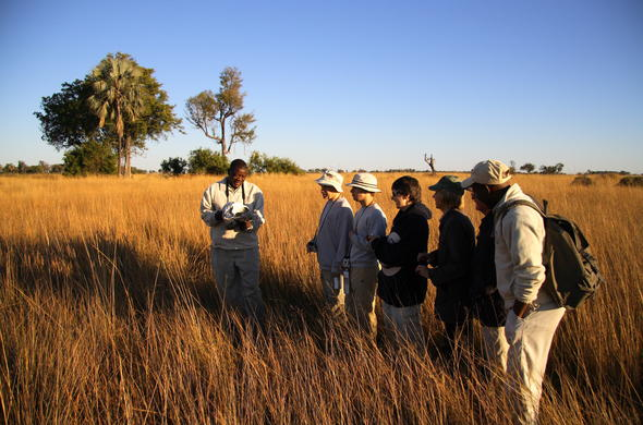 Walking safari in Okavango Delta.