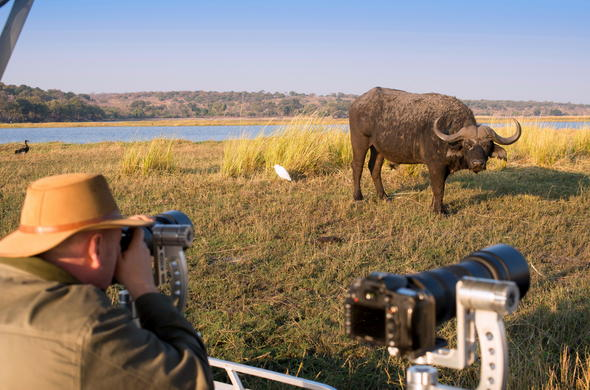 Photographic river cruise safari on the Chobe River.