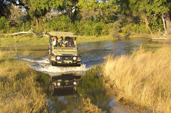 Thrilling game drive at Pom Pom Camp in the Okavango Delta.