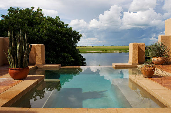View from your private plunge pool at Chobe Game Lodge