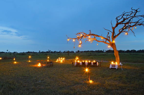 Romantic honeymoon dinner in the Botswana bush.