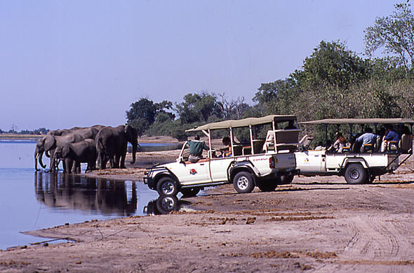 Game dricve at Chobe River. Jeremy Jowell
