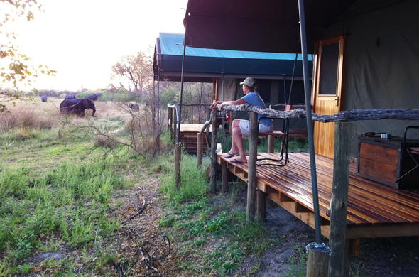 Observing a nearby elephant from private game viewing deck.
