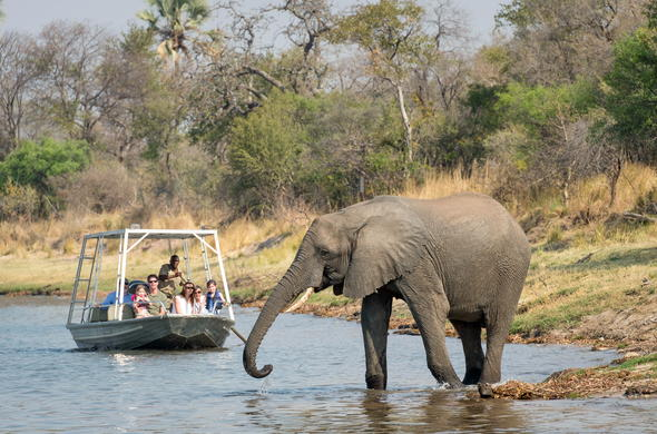 Boast safari on the Zambezi River.